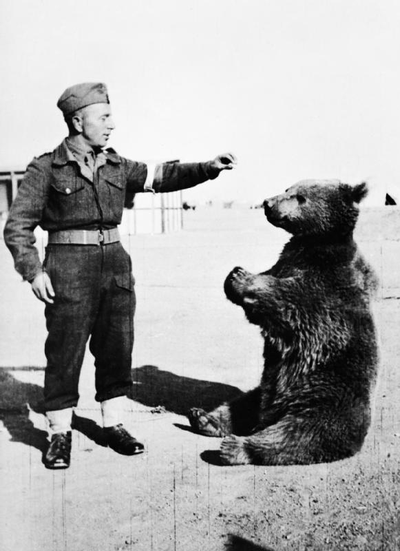 Wojtek the Soldier Bear