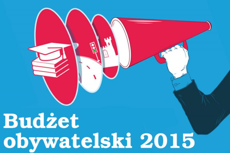 citizen's budget 2015