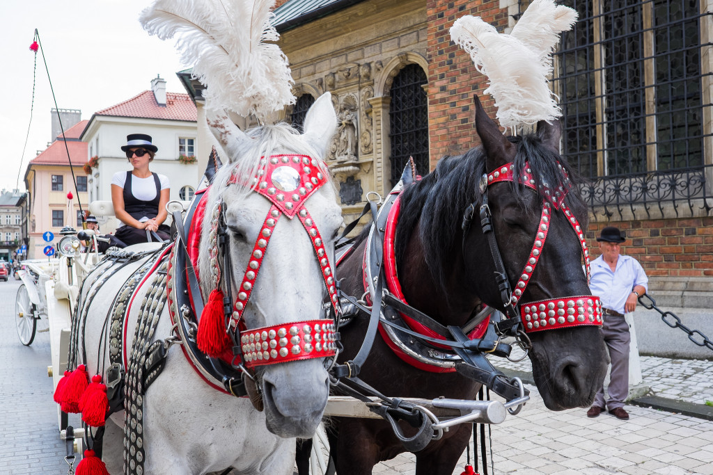 Horse-drawn carriages are a popular tourist attraction on Krakow's Main Square (David Staedtler)