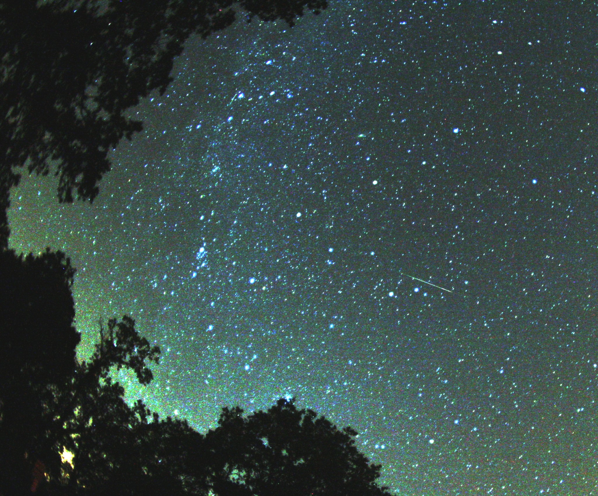 A shooting star during the 2007 Perseid meteor shower