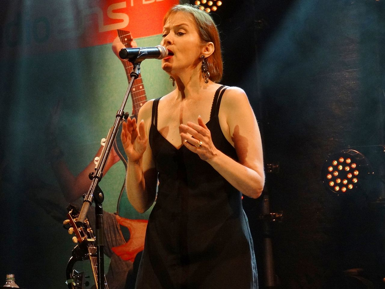 Suzanne Vega will play tonight at Krakow's ICE center