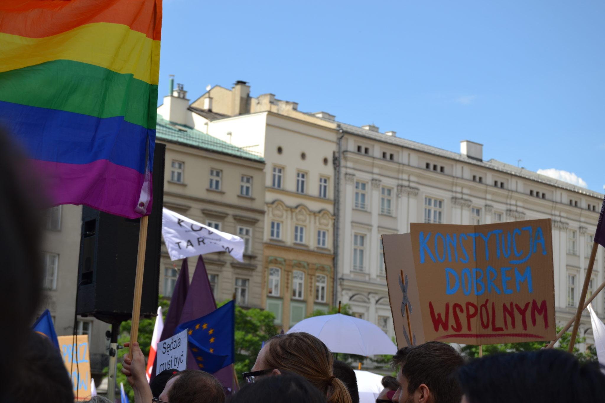 """One of several LGBTQ pride flags can be seen near a protest sign: """"THE CONSTITUTION IS A COMMON GOOD"""""""