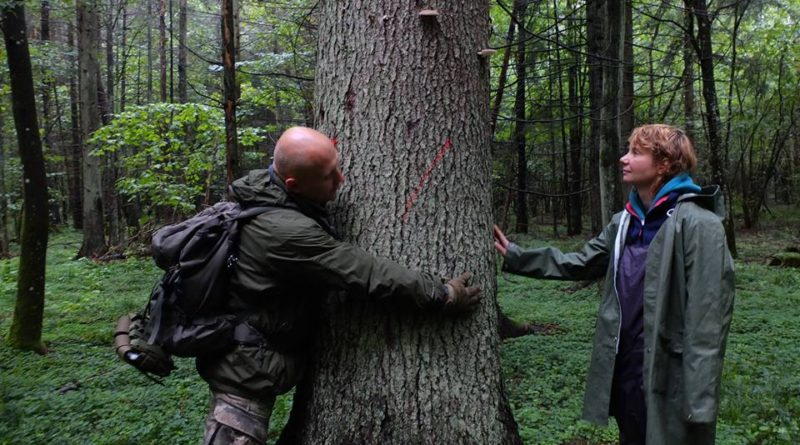 An Evening to Save Poland's Oldest Forest