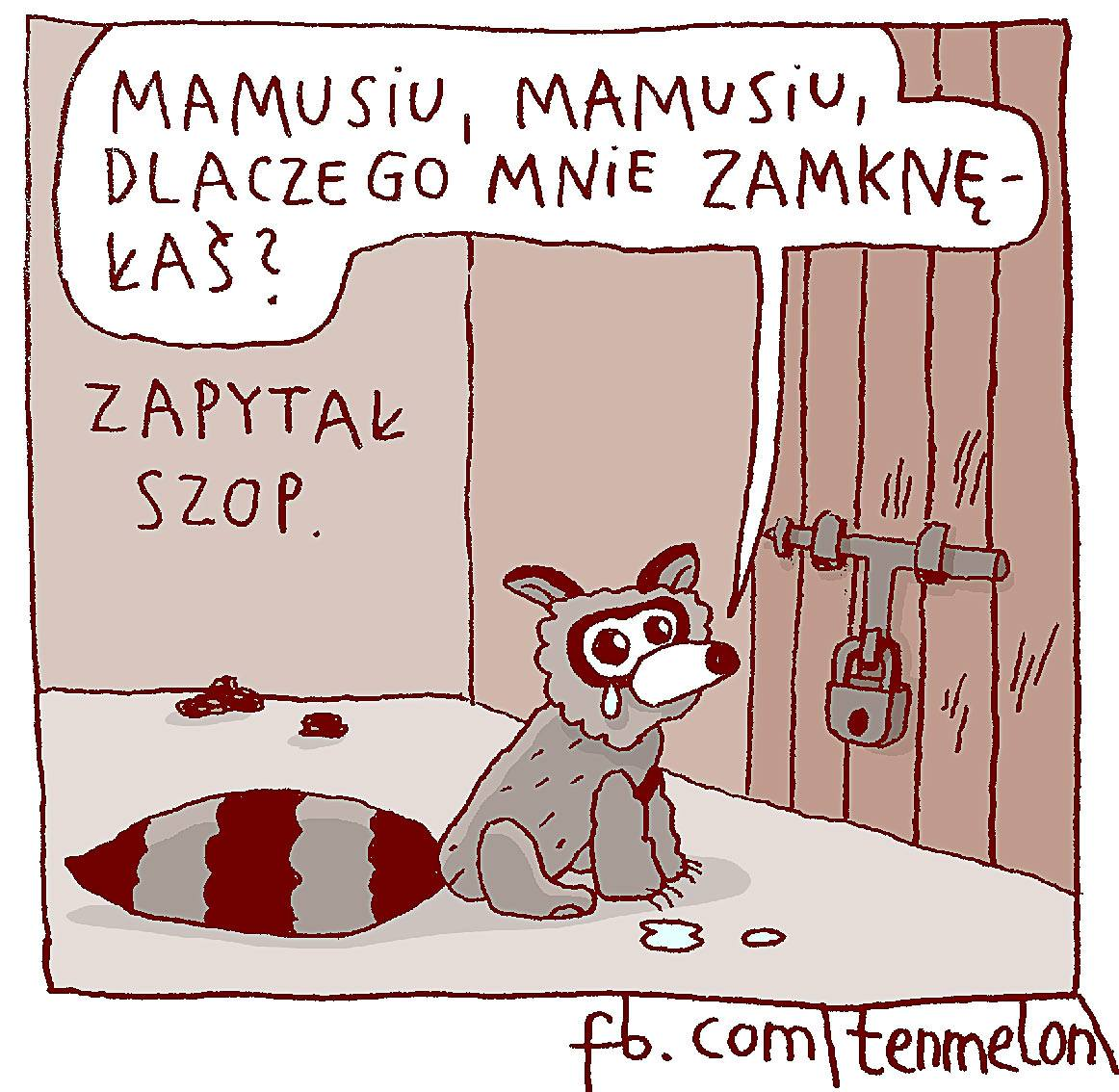 "(""Mommy, mommy, why have you locked me up?"" asked the raccoon)"