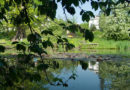 Botanic Garden of the Jagiellonian University in Krakow (phot. Grabi)