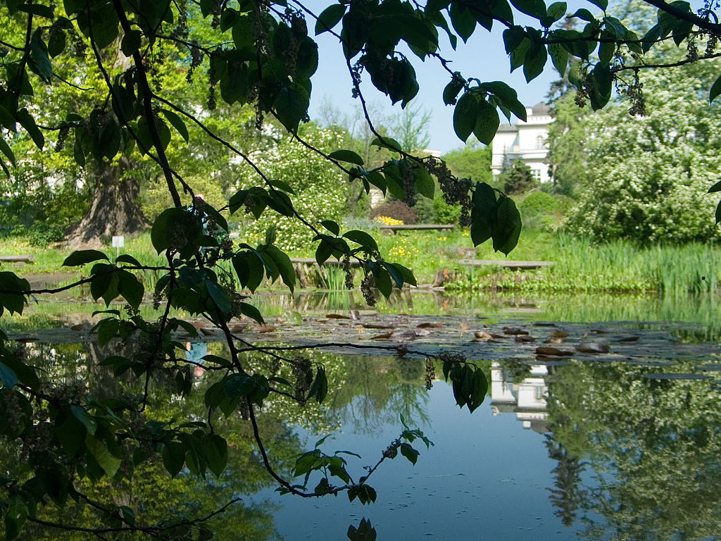 Botanic Garden of the Jagiellonian University in Krakow (phot. Grabi)