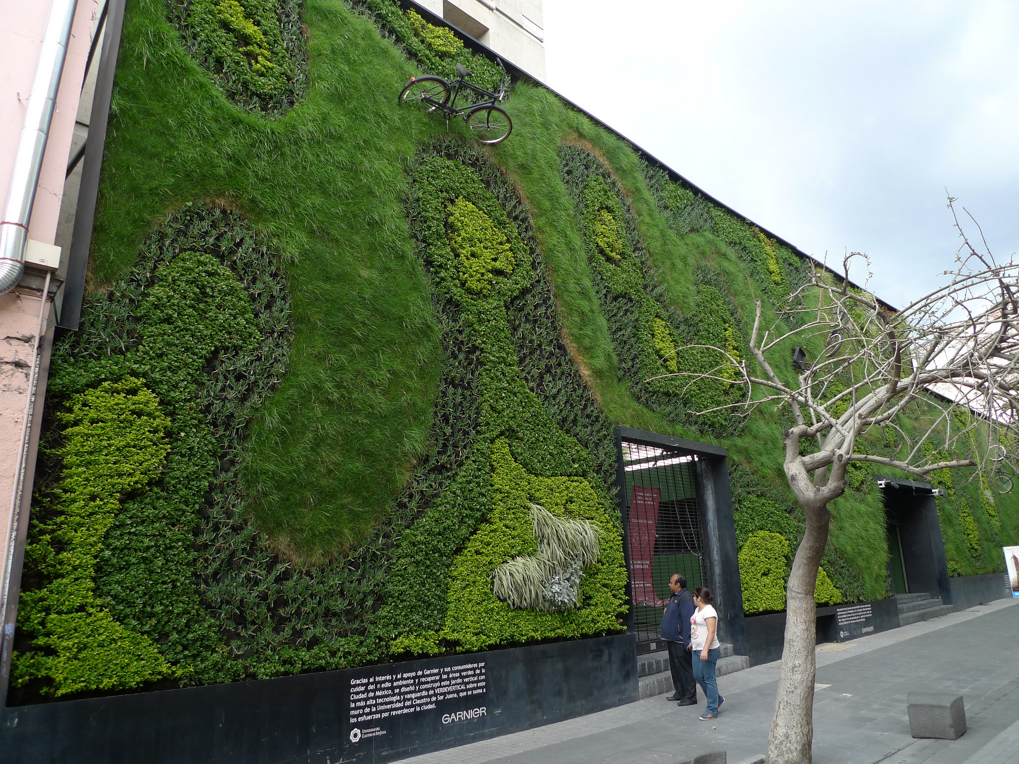 A green wall in Mexico City. You might see similar installations popping up around Krakow as a result of the 2018 Citizens' Budget (phot. Mark Hogan)
