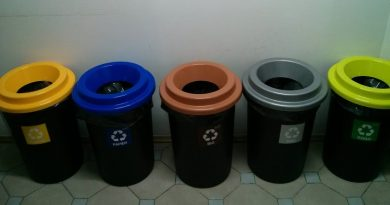 What color bin should I put my rubbish in?