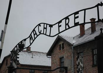 What Happened in Auschwitz?