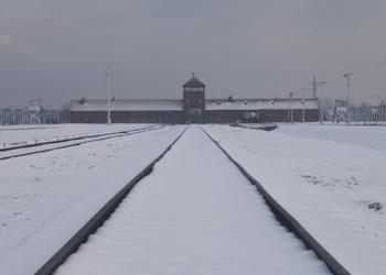 The World Remembers Auschwitz
